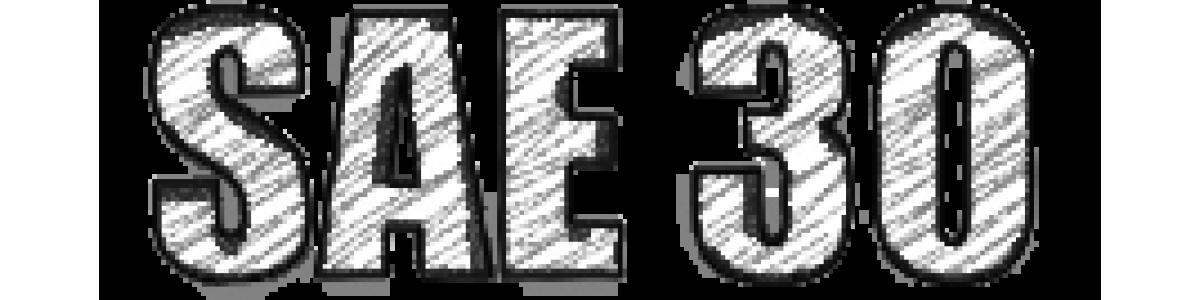 SAE 30